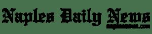 logo-ndn-500w-BLK